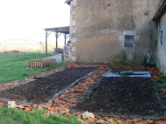 Blogley planting spinach