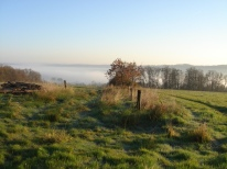 Mist in the Vienne valley