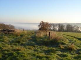 Mist in the Vienne valley