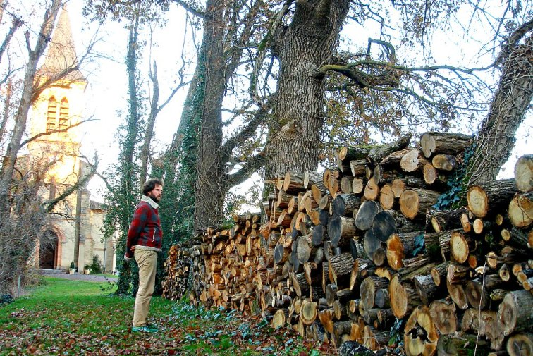 logs-pile